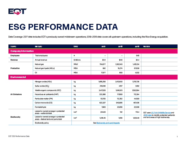 ESG Performance Data 2017-2019